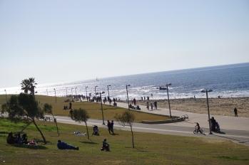 Yaffa Park