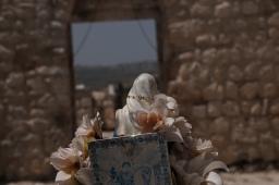 Taybeh, Palästina